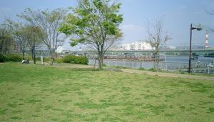1辰巳の森海浜公園